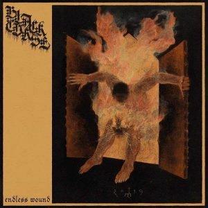 Black Curse – Endless Wound