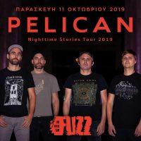 PELICAN live